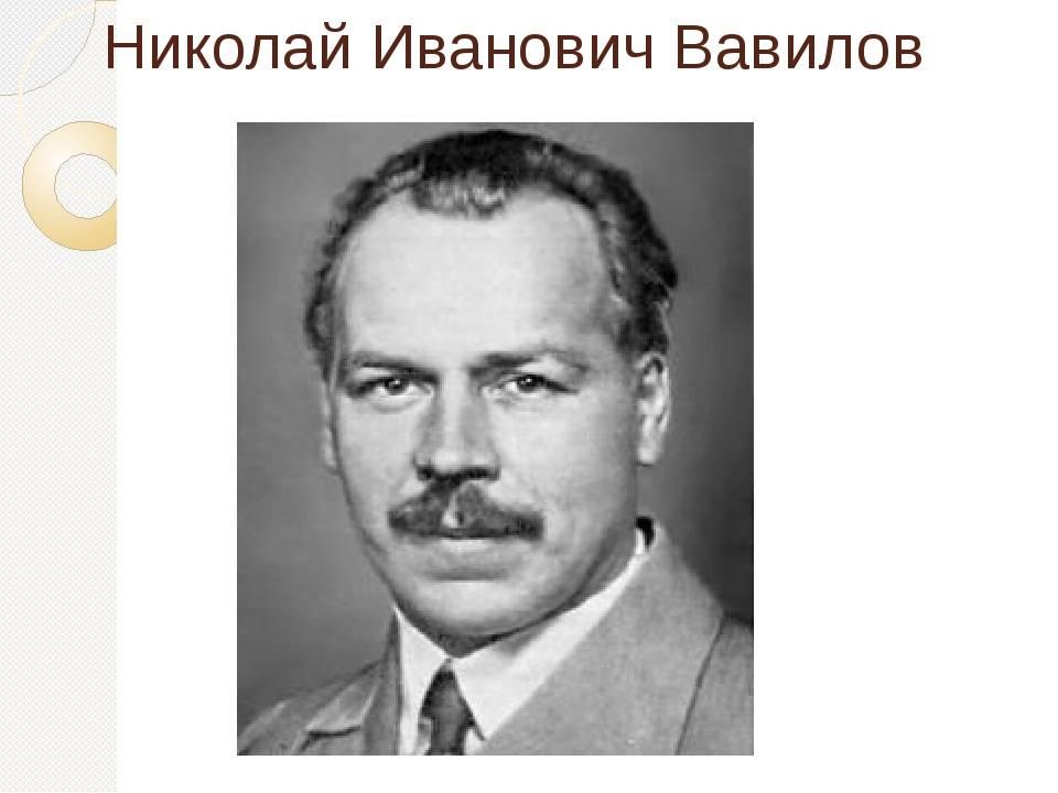 Николай вавилов – биография, фото, личная жизнь, вклад в науку | биографии