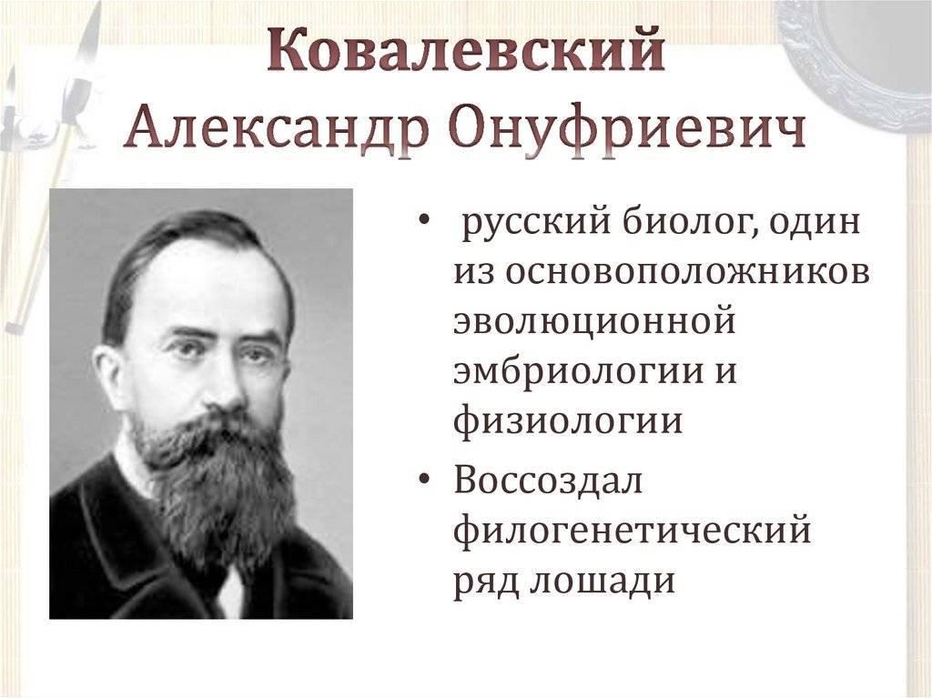 Владимир и софья ковалевские: жизнь ради «воробушка» | милосердие.ru