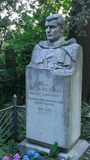 Максим шевченко - биография, информация, личная жизнь, фото, видео