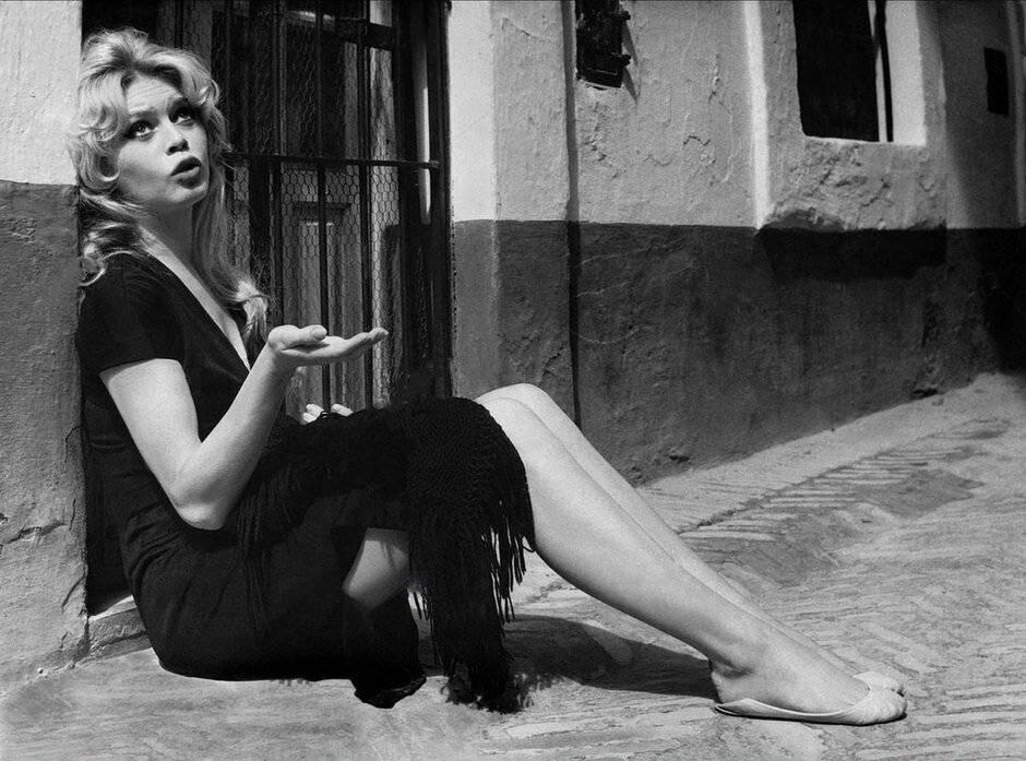 Актриса брижит бардо: фото, фильмография, биография, личная жизнь и интересные факты