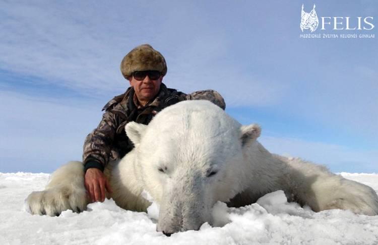 Александр медведь