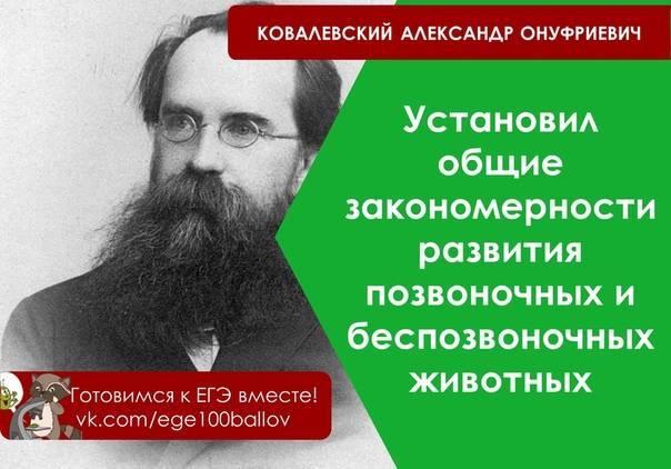 Ковалевский, александр онуфриевич — википедия