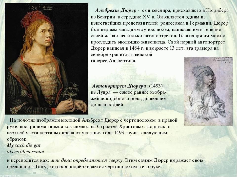 Биография альбрехта дюрера: гений эпохи ренессанса