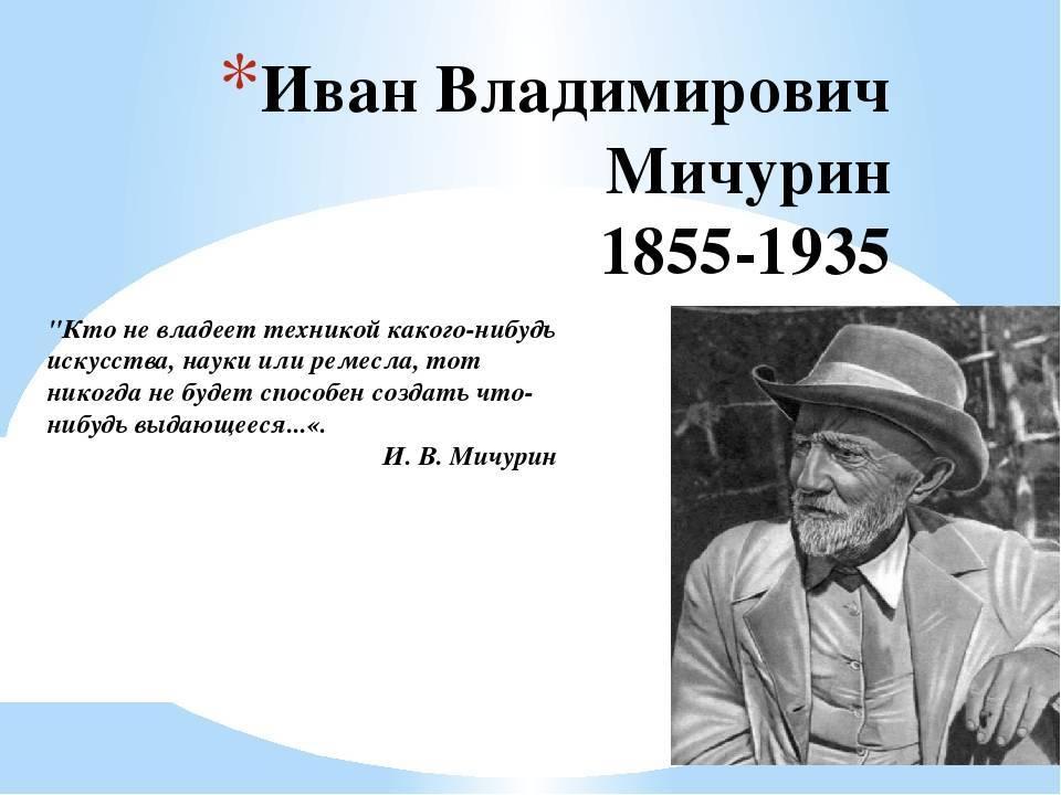 Иван владимирович мичурин: лучшие сорта плодовых и ягодных культур, созданные великим селекционером