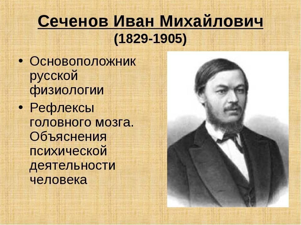 Иван сеченов: специалист по людям