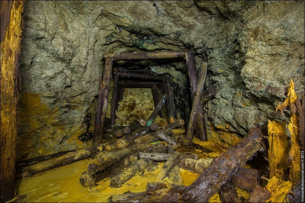 Гарик рудник - биография, информация, личная жизнь