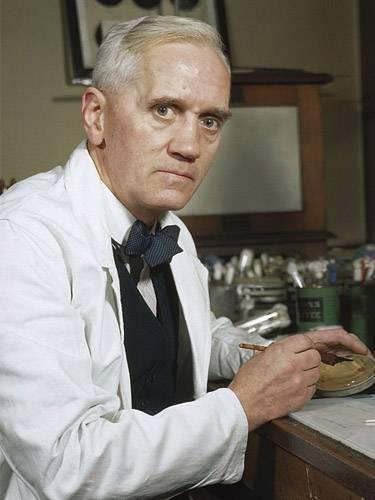 Открытие пенициллина александром флемингом