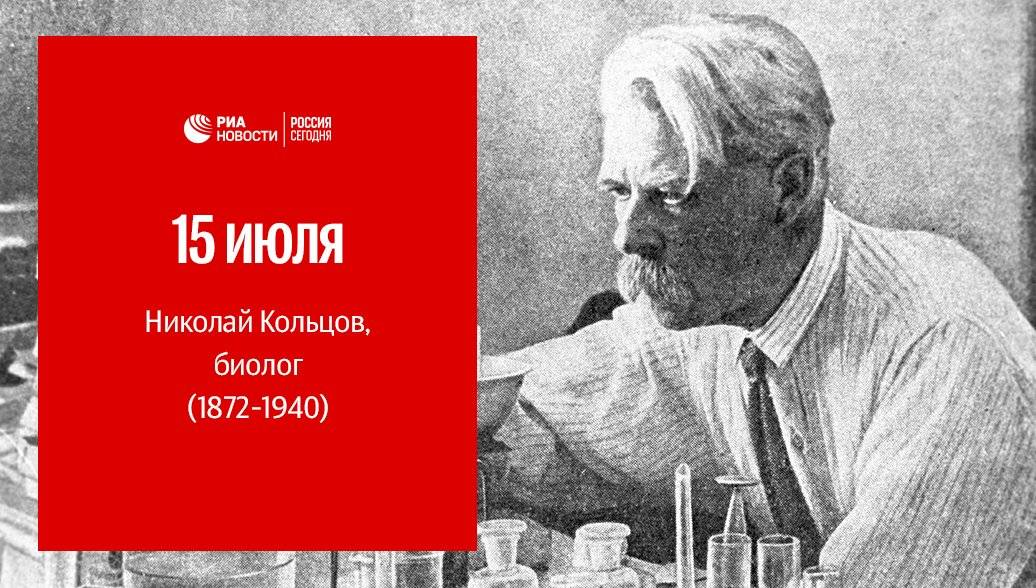 Биография алексей васильевича кольцова — известного русского поэта