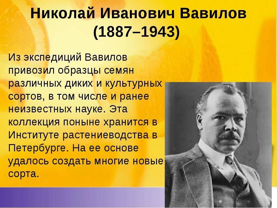 Николай иванович вавилов (1887-1943) - мое семейное древо