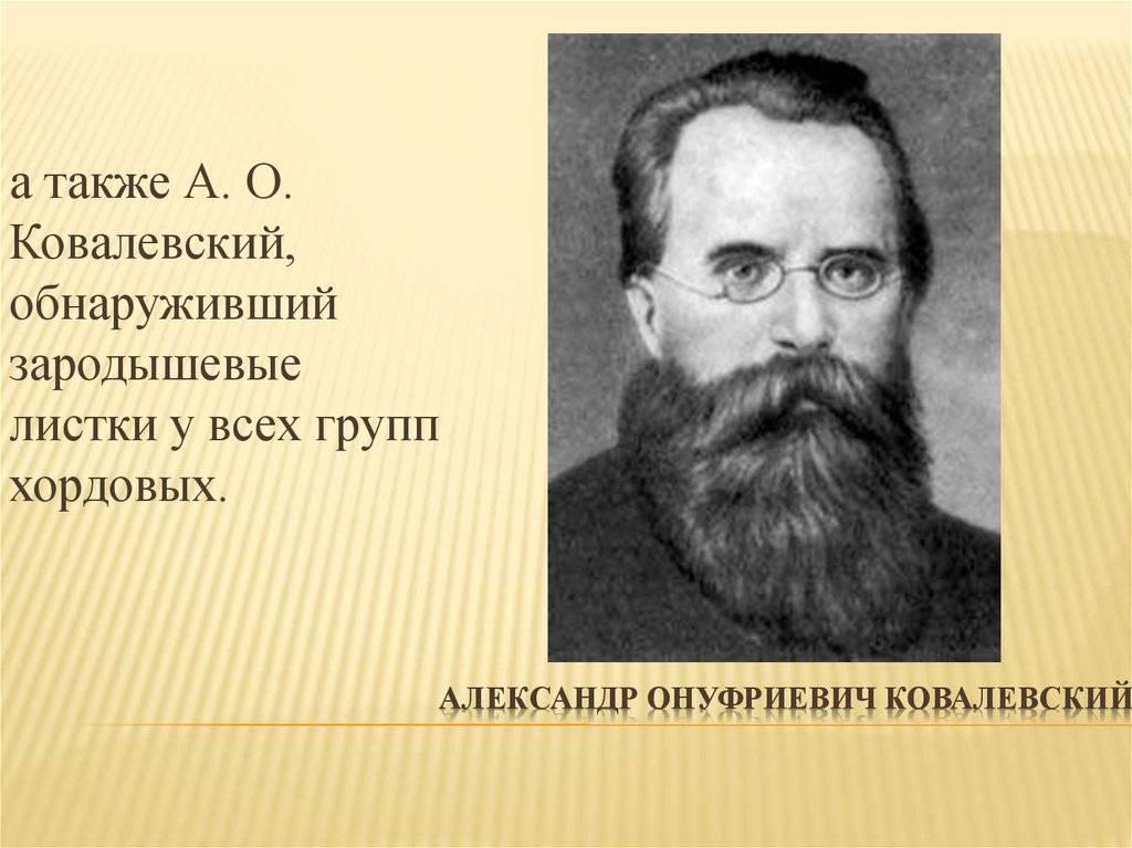 Ковалевский, александр онуфриевич - вики
