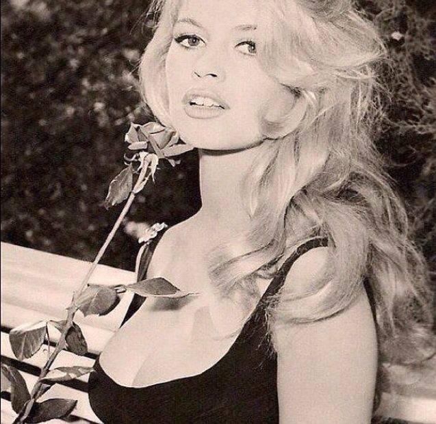 Брижит бардо (brigitte bardot) - биография, информация, личная жизнь