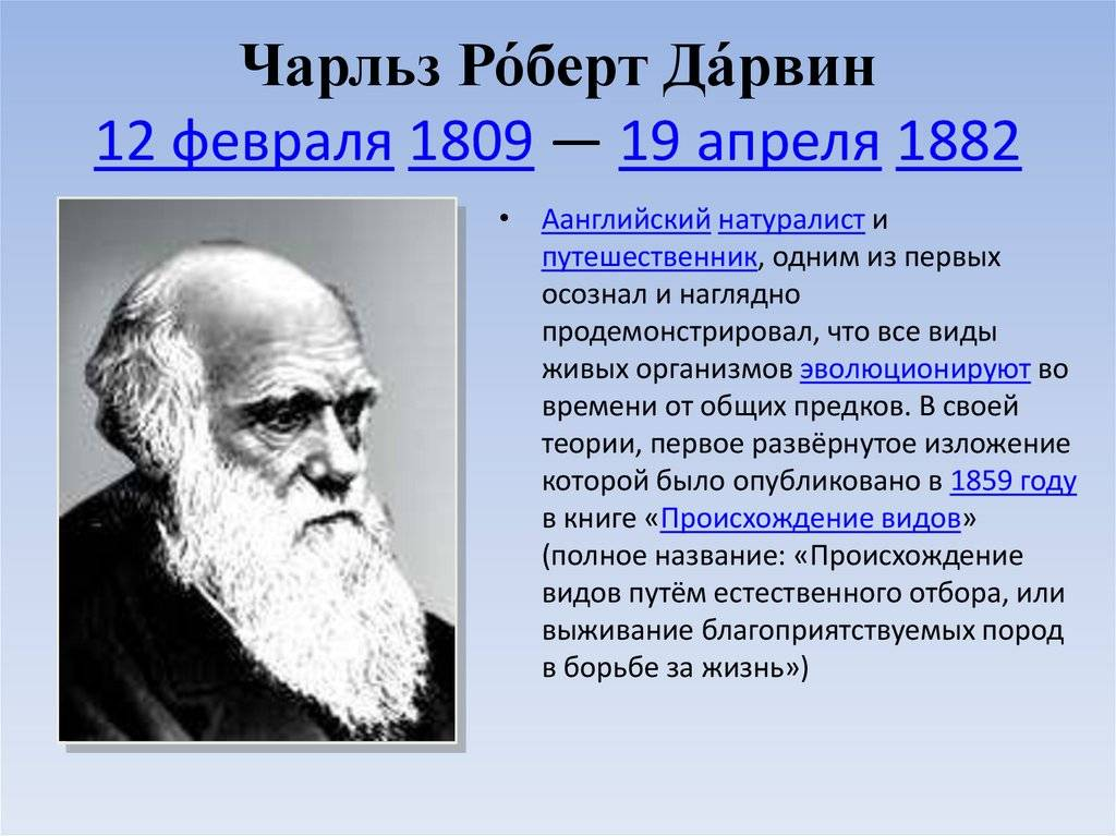 Чарльз дарвин — биография автора теории эволюции | исторический документ