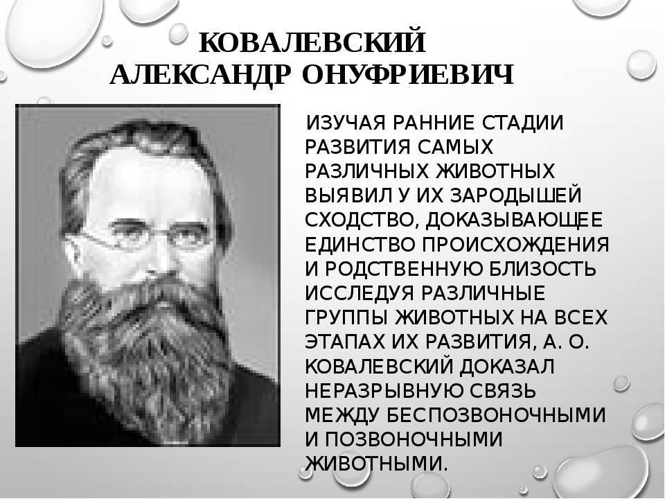 Wikizero - ковалевский, александр онуфриевич