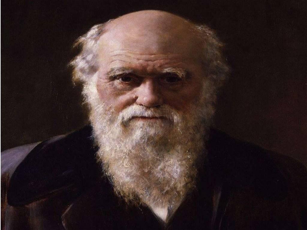 Чарльз дарвин: биография, открытия и достижения в науке