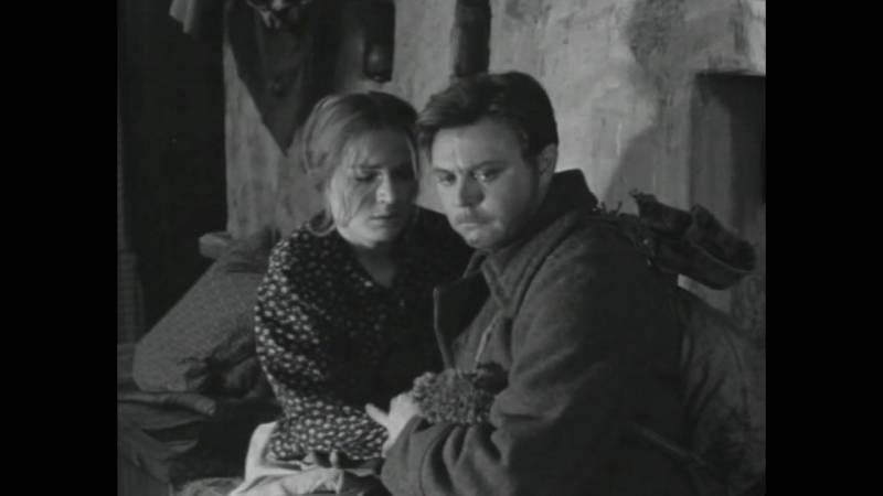 Владимир фетин - вики