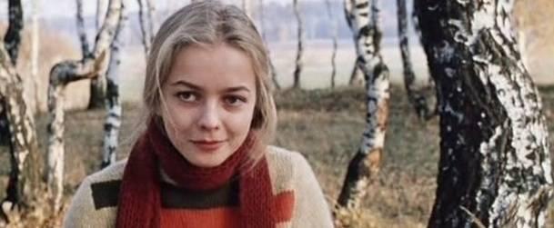 Актриса вавилова наталья: биография, личная жизнь, фильмография, интересные факты
