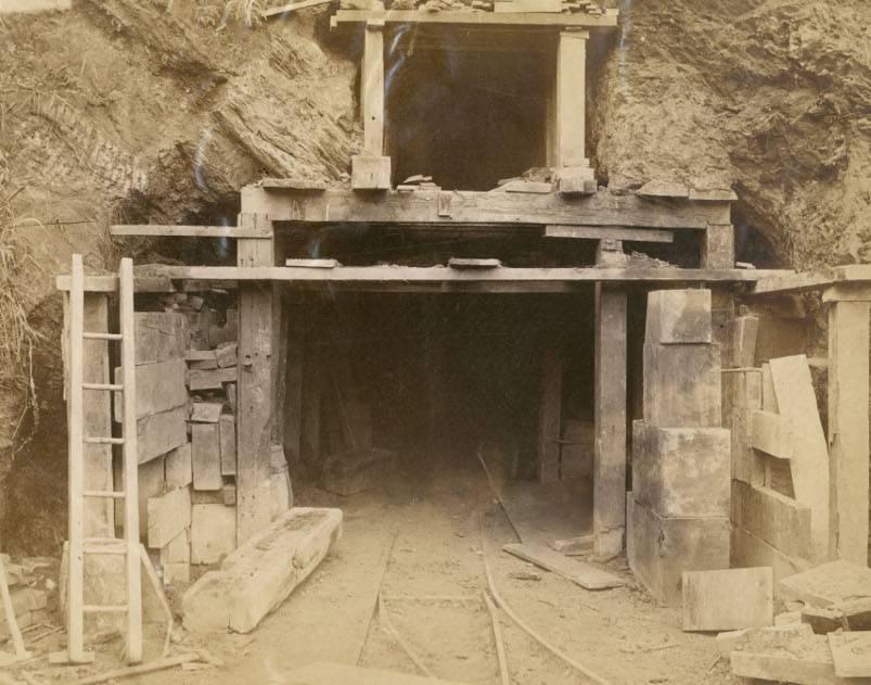 Рудник, давид яковлевич — вики