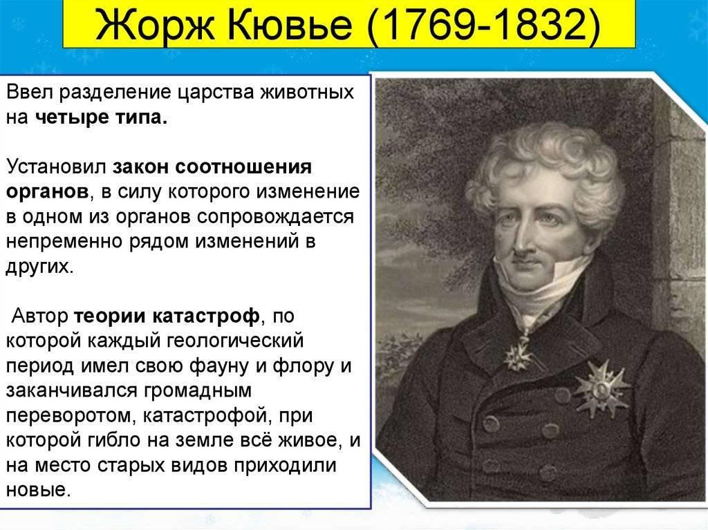 Кювье, жорж леопольд — википедия. что такое кювье, жорж леопольд