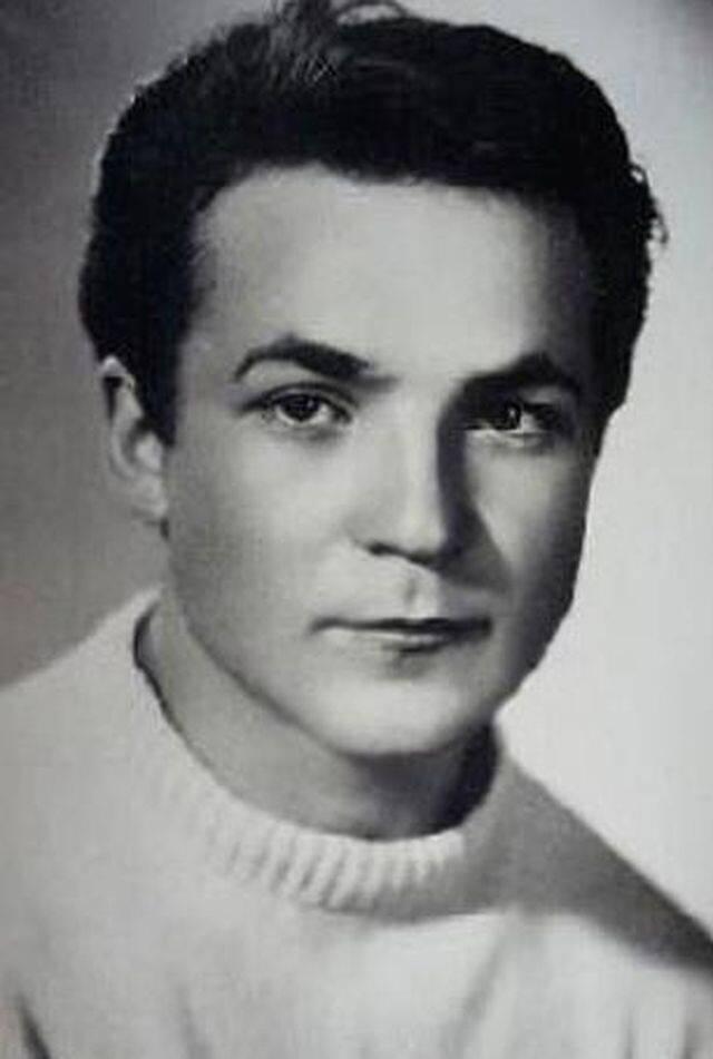 Губенко, николай николаевич — википедия