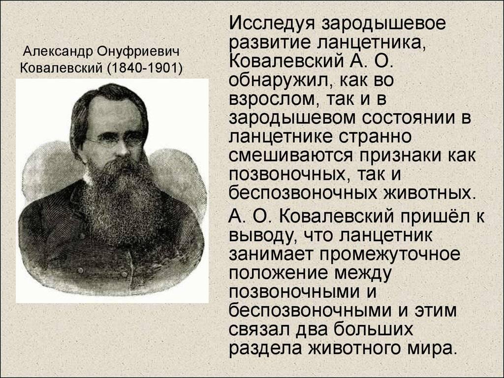 Ковалевский, владимир онуфриевич — википедия