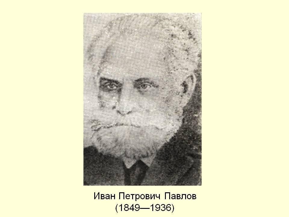 Краткая биография павлова ивана петровича