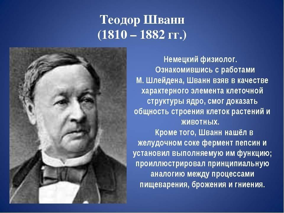 Шванн, Теодор