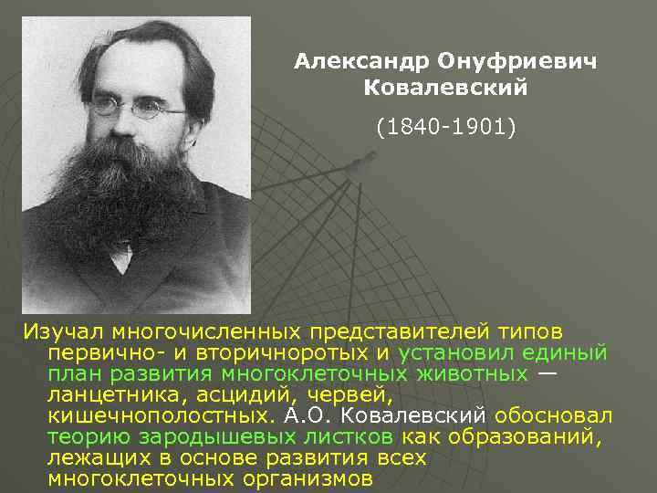 Ковалевский александр онуфриевич - вики