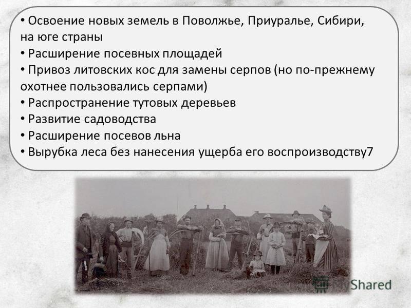 Тень кровавого террора нависла и над новой землей (воспоминания в.в. шевченко) | московский союз новоземельцев