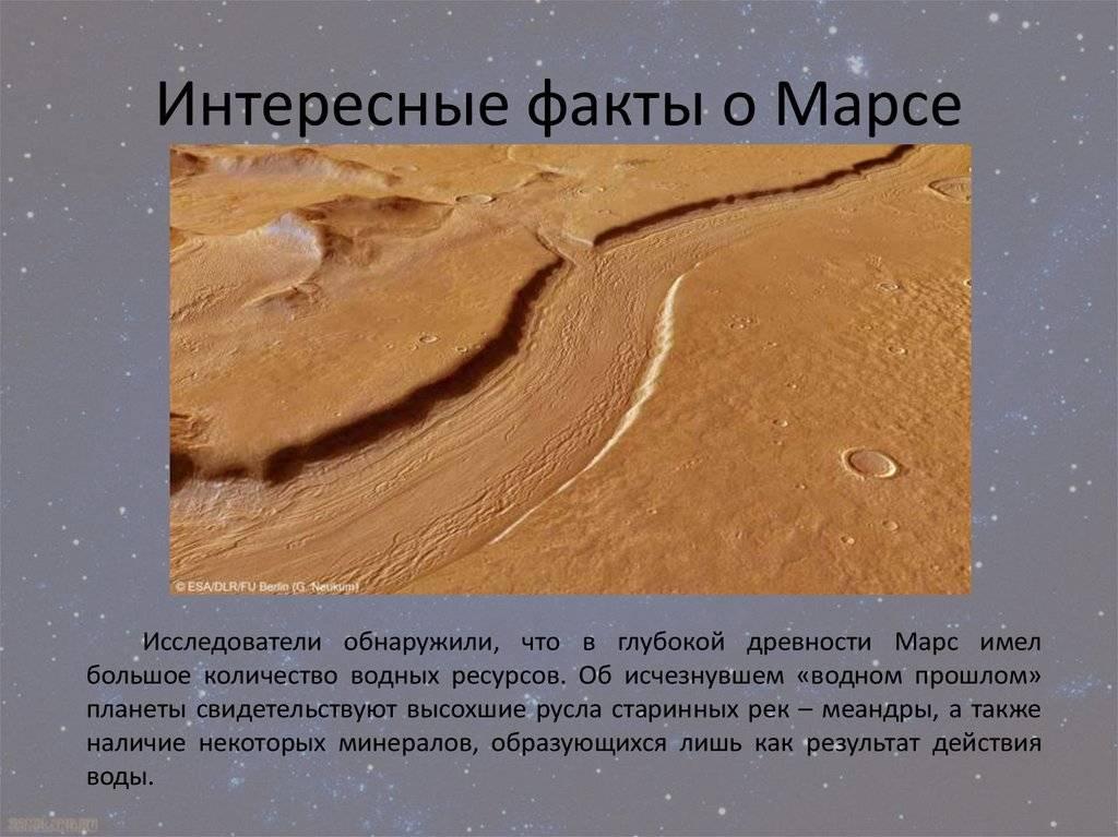 Бруно марс – биография, фото, личная жизнь, новости, песни 2021 - 24сми