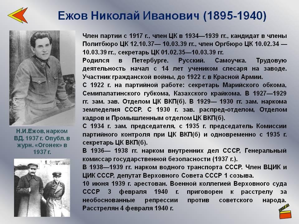 Николай ежов – биография, фото, личная жизнь, нквд - 24сми