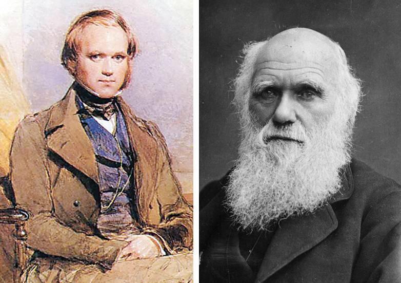 Чарльз дарвин – биография, фото, личная жизнь, теория происхождения видов, эволюция | биографии