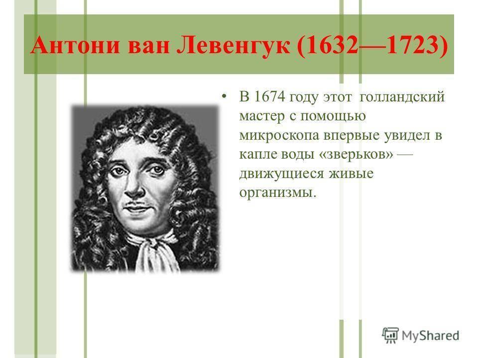 Антони ван левенгук: гениальные открытия спустя 384 года