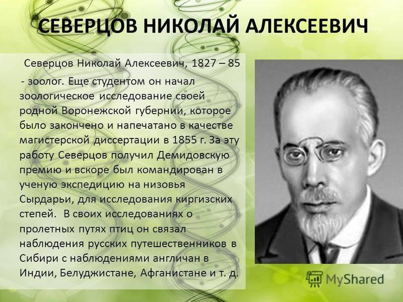 Северцов, николай алексеевич биография