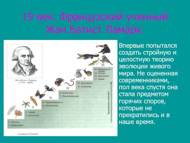 Жан батист ламарк — биография, наука, личная жизнь, труды