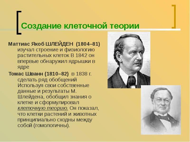 Шлейден, маттиас биография, ботанические таксоны, сочинения, именем шлейдена названы