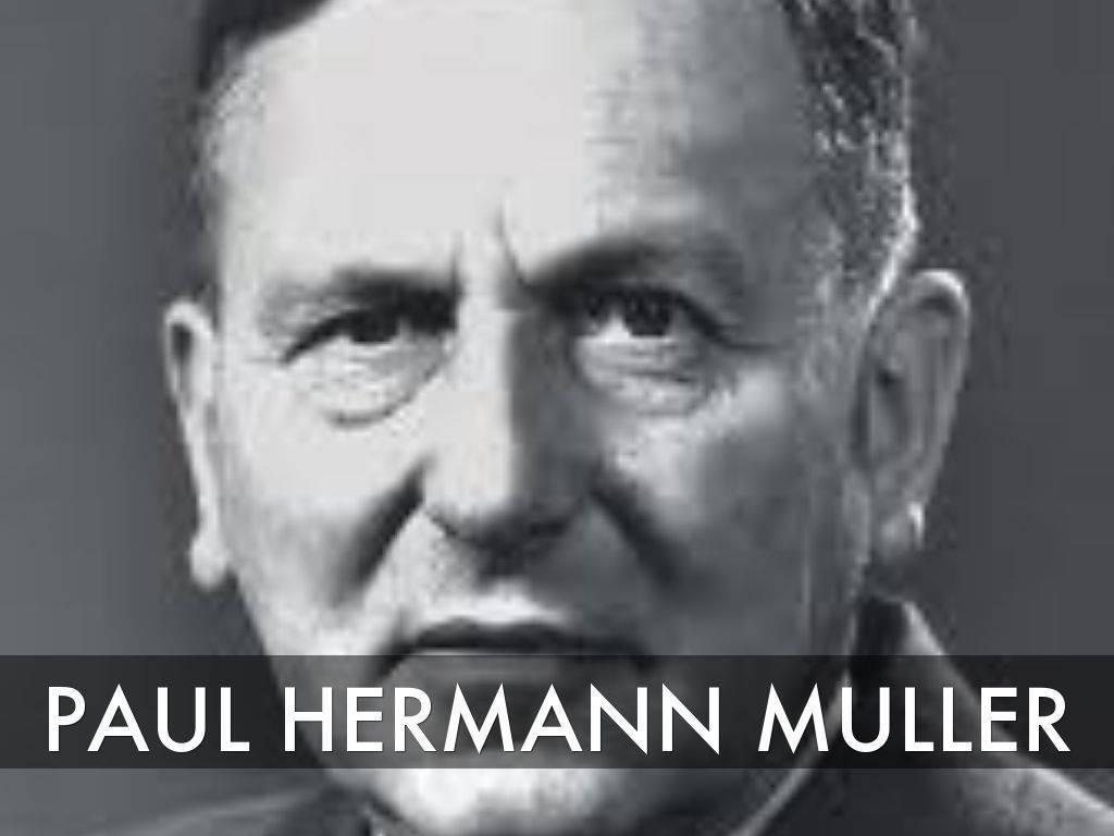 Пауль мюллер википедия
