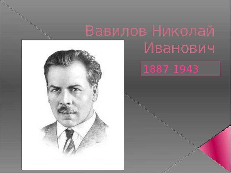 Николай иванович вавилов — интересные факты из жизни ученого | vivareit