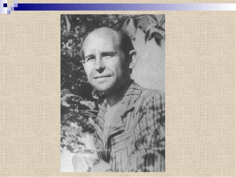 Краткая биография поэта николая рубцова   краткие биографии