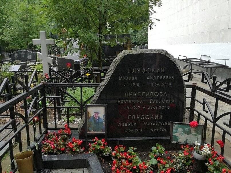 Биография Михаила Глузского