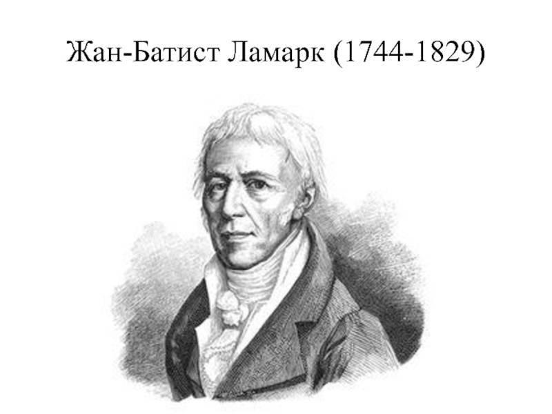 Ламарк, жан батист — википедия. что такое ламарк, жан батист