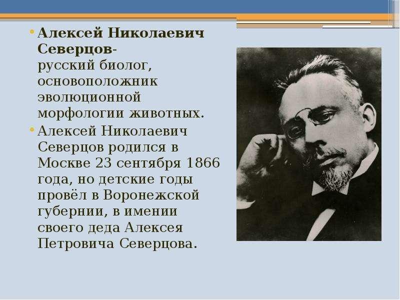 Биография : северцов николай алексеевич - вариант 1 - twidler.ru