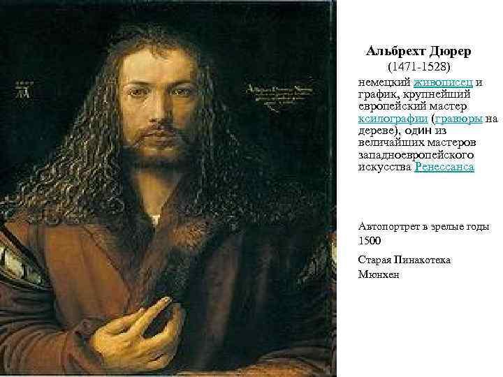 Альбрехт дюрер: жизнь и творчество художника