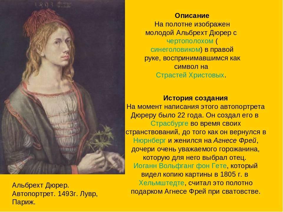 Альбрехт дюрер (1471-1528) — краткая биография, жизнь и творчество художника