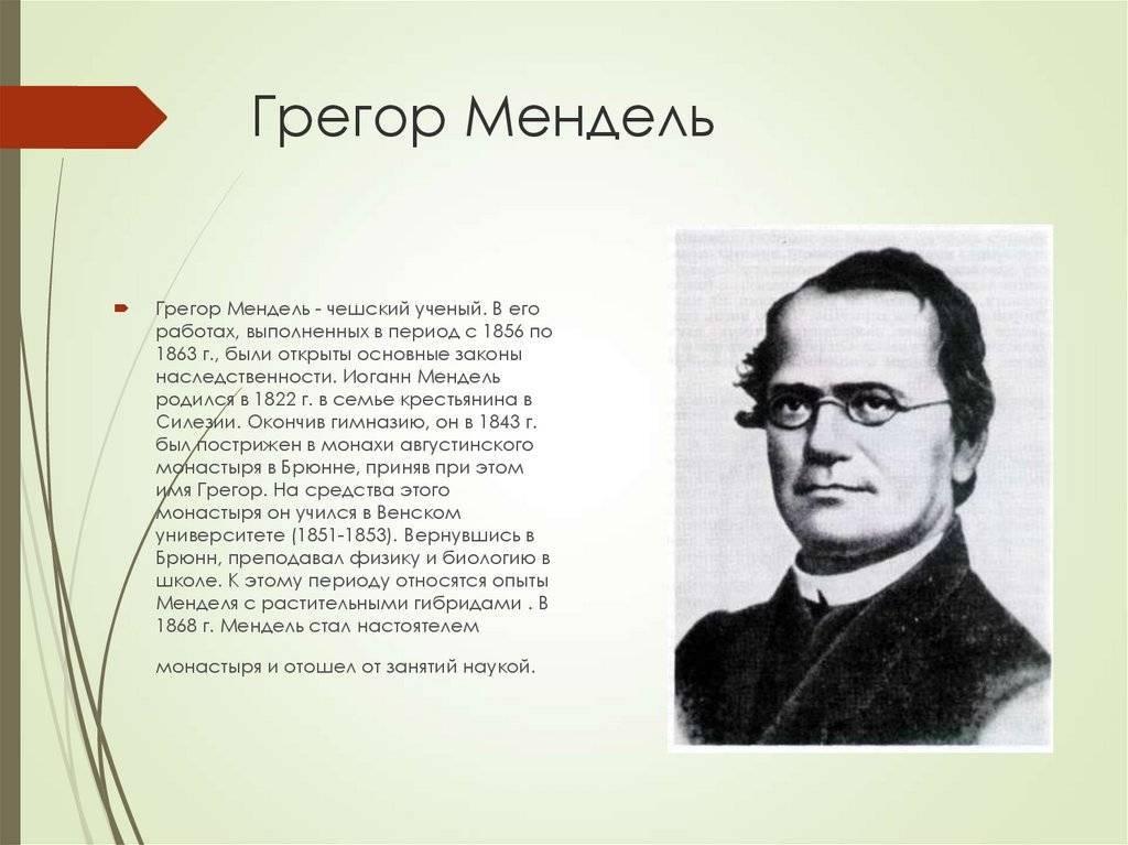 А или мендель • ru.knowledgr.com