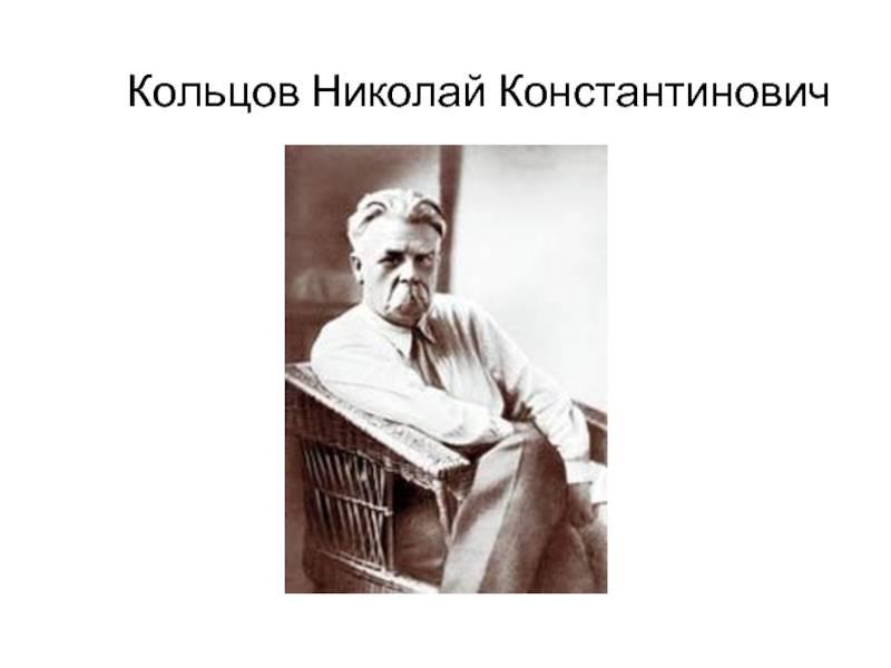 Николай константинович кольцов биография, научная деятельность, достижения, публикации